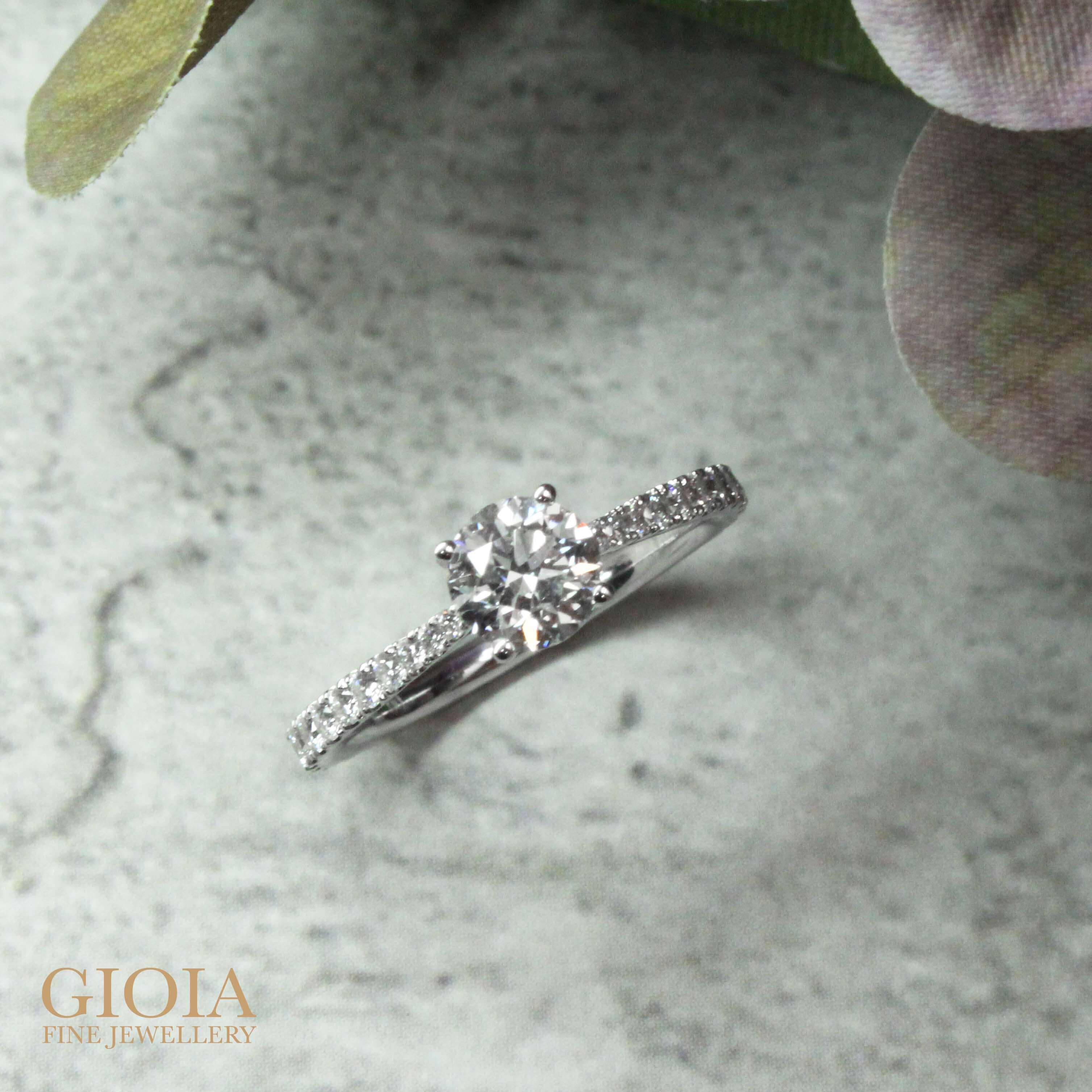 Diamond wedding proposal Ring - customised with round brilliant diamond and micro set with diamond setting on the tapered ring bands   Local Designer jewellery at GIOIA Fine Jewellery